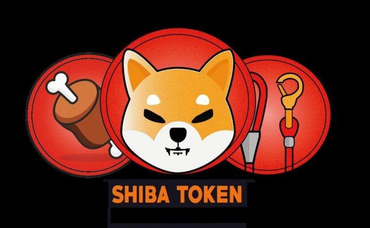 Shiba Inu Coin Cryptocurrency Bone Leash Token
