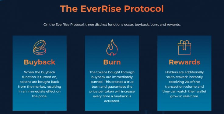 EverRise Cryptocurrency Coin Token Protocol Tokenomics
