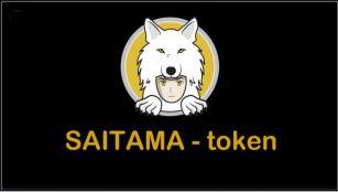 Saitama Inu Coin Token Cryptocurrency