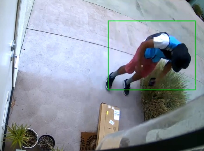 Amazon Delivery Driver steals