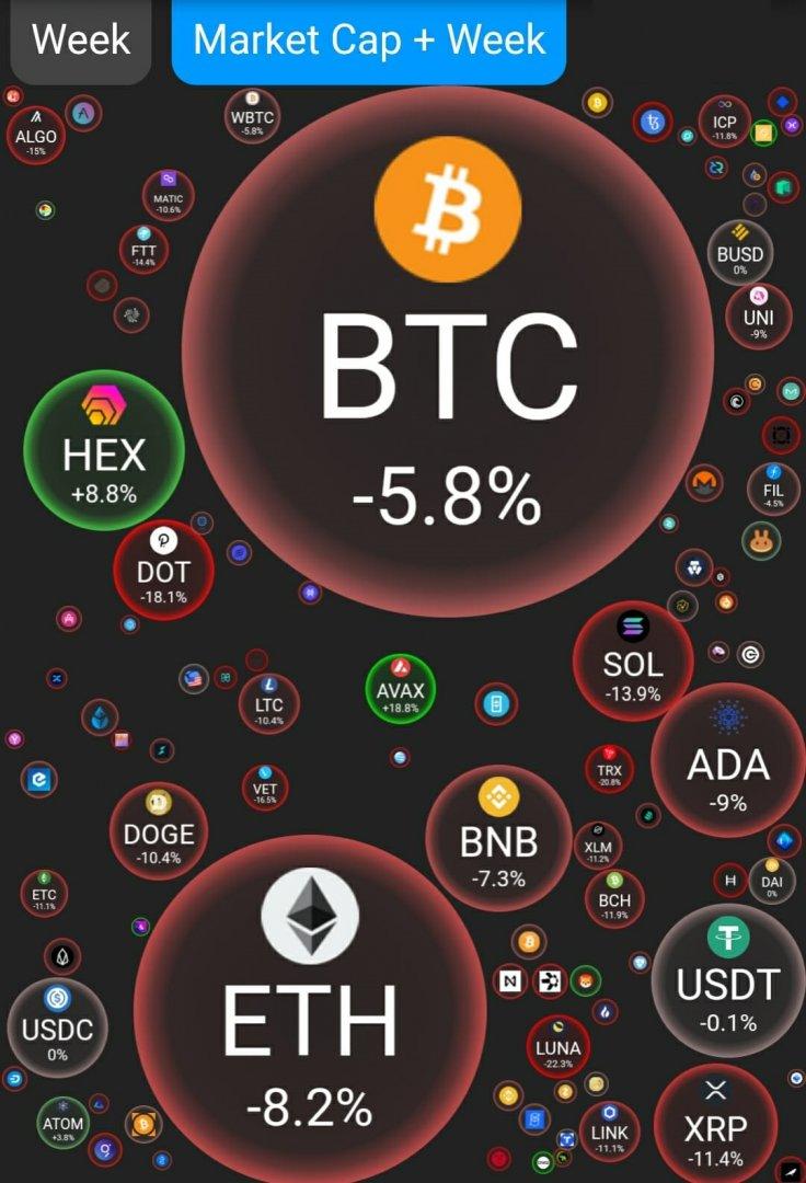 Hex Dominates Market Cap