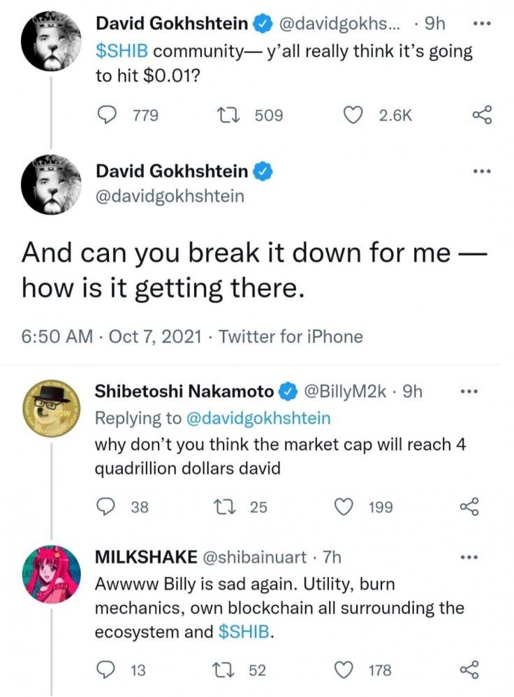 David Gokhshtein how Shiba Inu reaching $0.01
