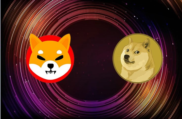 Shiba Inu Dogecoin Cryptocurrency Doge Killer