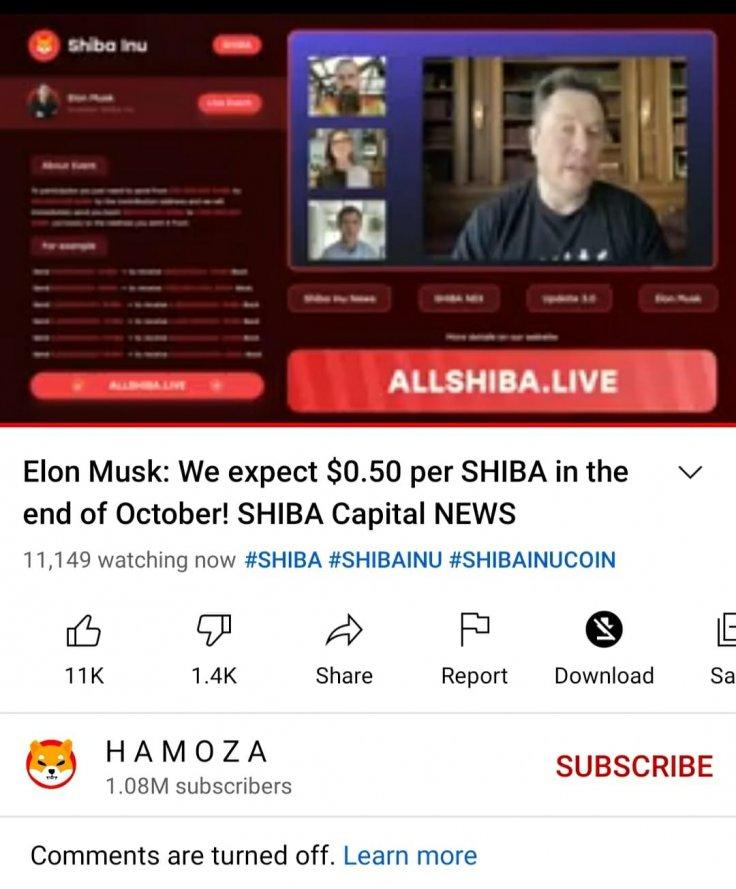 Fake Elon Musk Shiba Inu Live Video