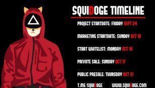 SquiDoge Token Rug Pull Scam Developers Presale