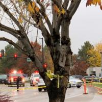 Idaho mall shooting