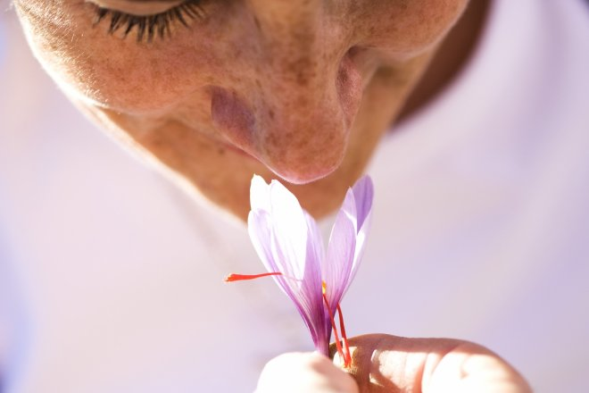 Fading sense of smell may suggest early death