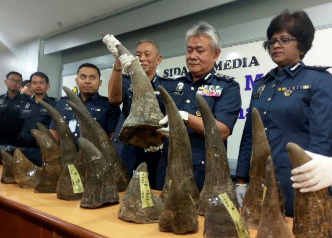 Malaysia seizes big shipment of rhino horns at airport